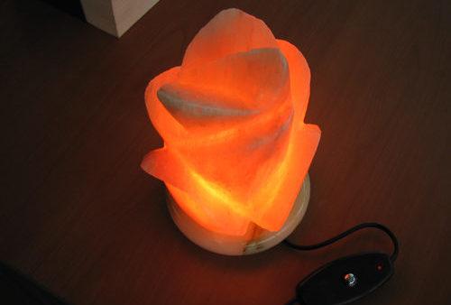 장미 모양으로 만들어진 소금 램프